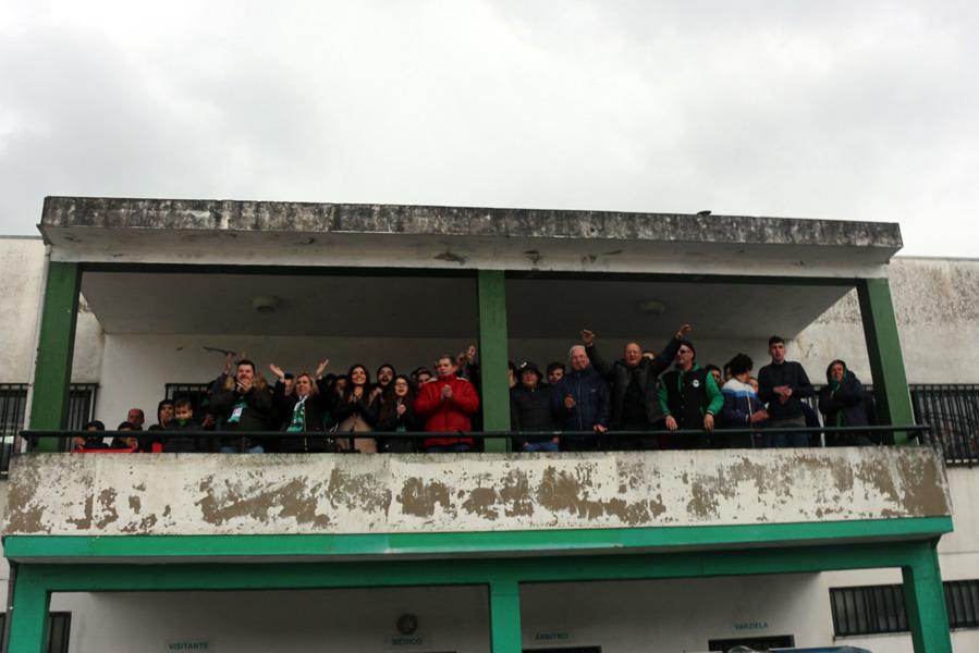 Sardoniscas Verdes a fazerem festa